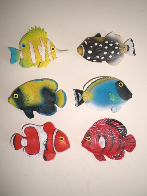 Magnet fische aquarium salzwasser 6 stck neu ebay for Salzwasser aquarium fische