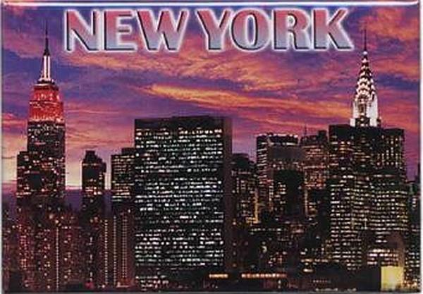 New York Central Park Foto Fridge Kühlschrank Magnet Reise Souvenir 141